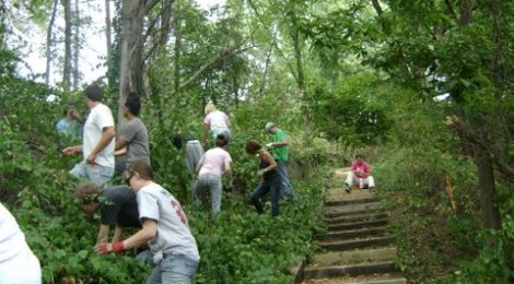 Century College students help maintain trail areas at Maplewood Nature Center