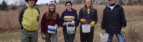 MHS Eco Club Students Add Prairie Forbs to New Wildwood Landscape