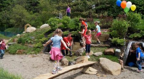 Great Wildwood Natural Playground News!