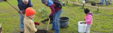 A big hooray for Tree Planting Day!